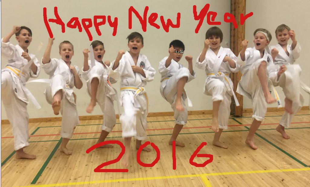 2015-11_Belt_test_group_new_year2