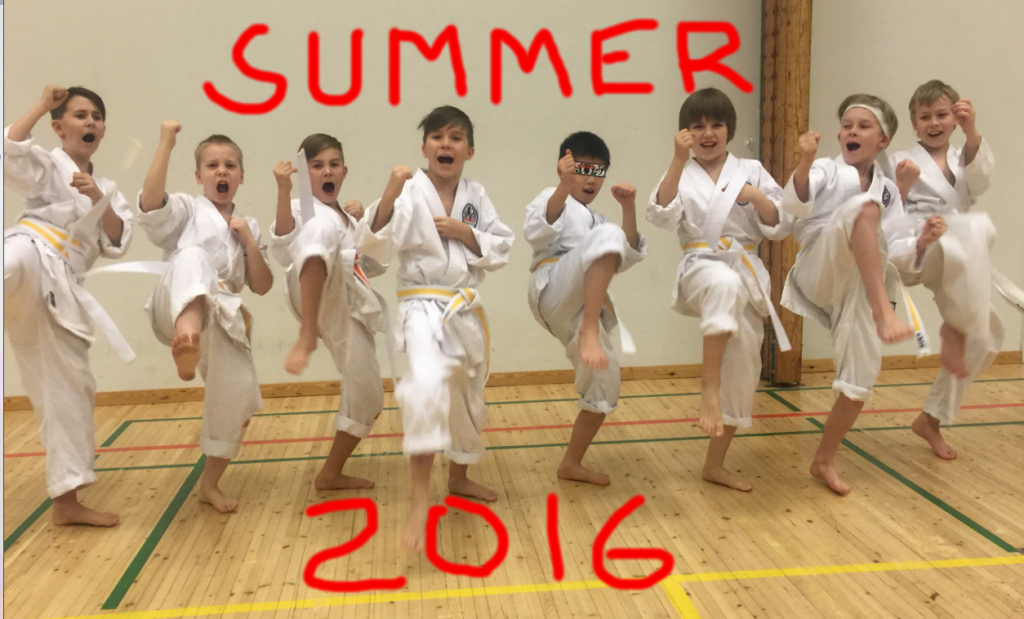 2015-11_Belt_test_group Summer_2016